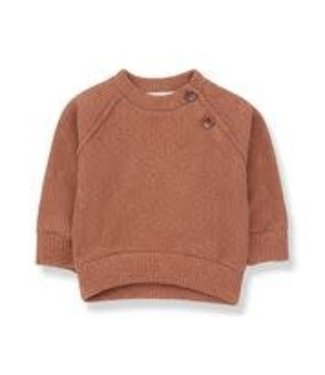 1+ in the family Sweatshirt Livigno Toffee 6 mnd