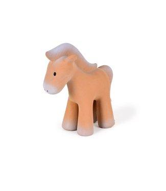 Tikiri Paard