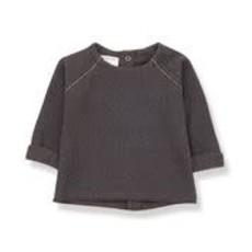 1+ in the family Sweater Farrera Terrau