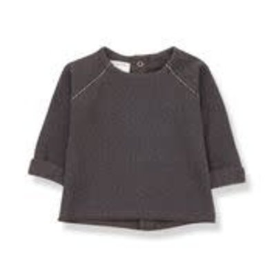 1+ in the family Sweater Farrera Terrau