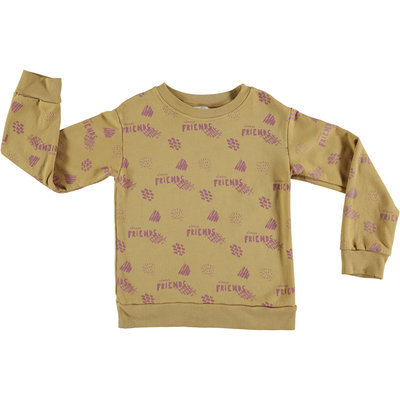 Pinata Pum Sweater ochre Friends