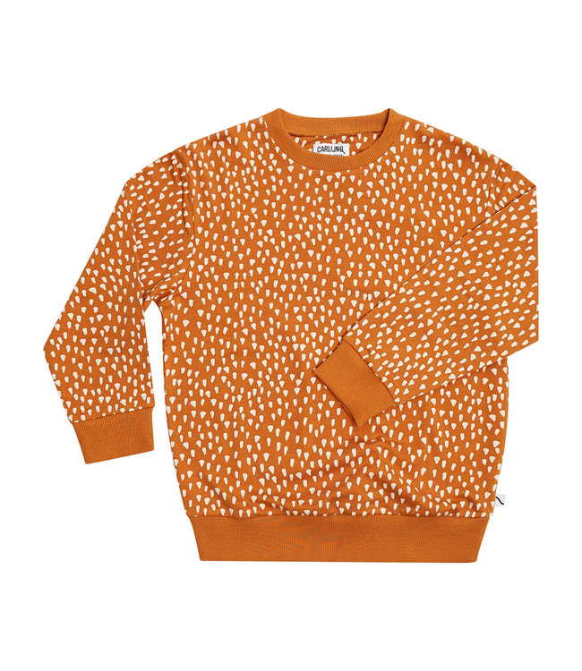Carlijn Q Sweater Golden Sparkles