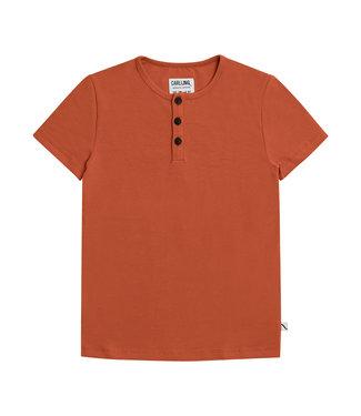 Carlijn Q Tshirt basic Henley Short sleeves (geel )