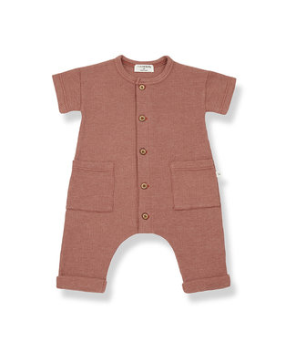 1+ in the family Jumpsuit Aida Roibos