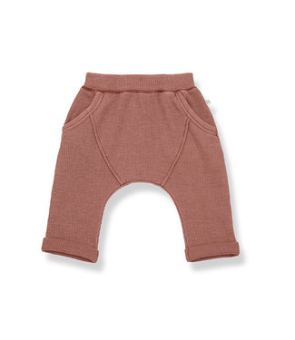 1+ in the family Baggy Pants Tomas Roibos
