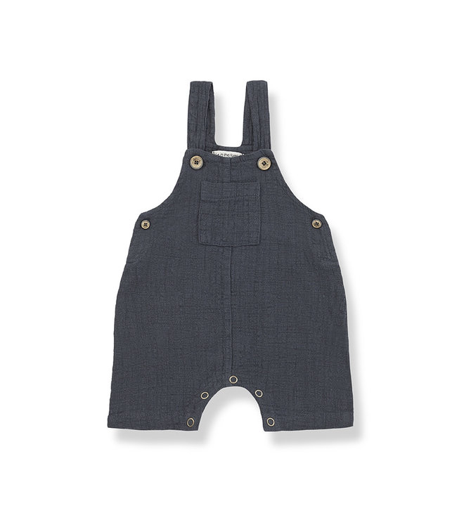 1+ in the family Dungaree Nacho