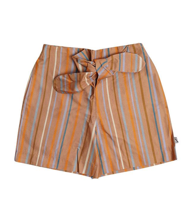 Multicolor Shorts Bermuda