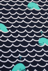 swimming whale lycra sports