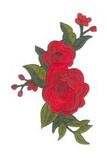 Brouwer applicatie rode roos
