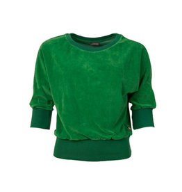 Velours Sybille Green - Froy & Dind