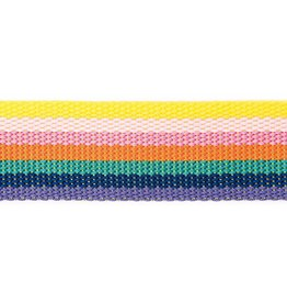 Rico Design Tassenband rainbow gestreept 40mm x2m