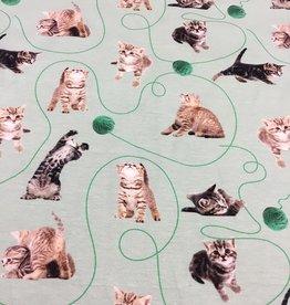 COUPON Digital print tricot cats poezen dusty mint (73X150)
