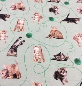 Digital print tricot cats poezen dusty mint