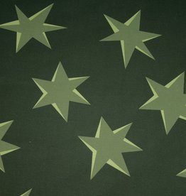 Hilco Big Pattern 9 Green Stars