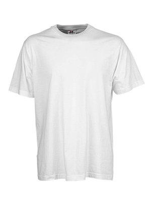Teejays Basic t-shirt, ideaal als promoshirt