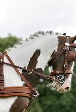 Ideal Ideal Enkelspan Leathertech Combi Tuig