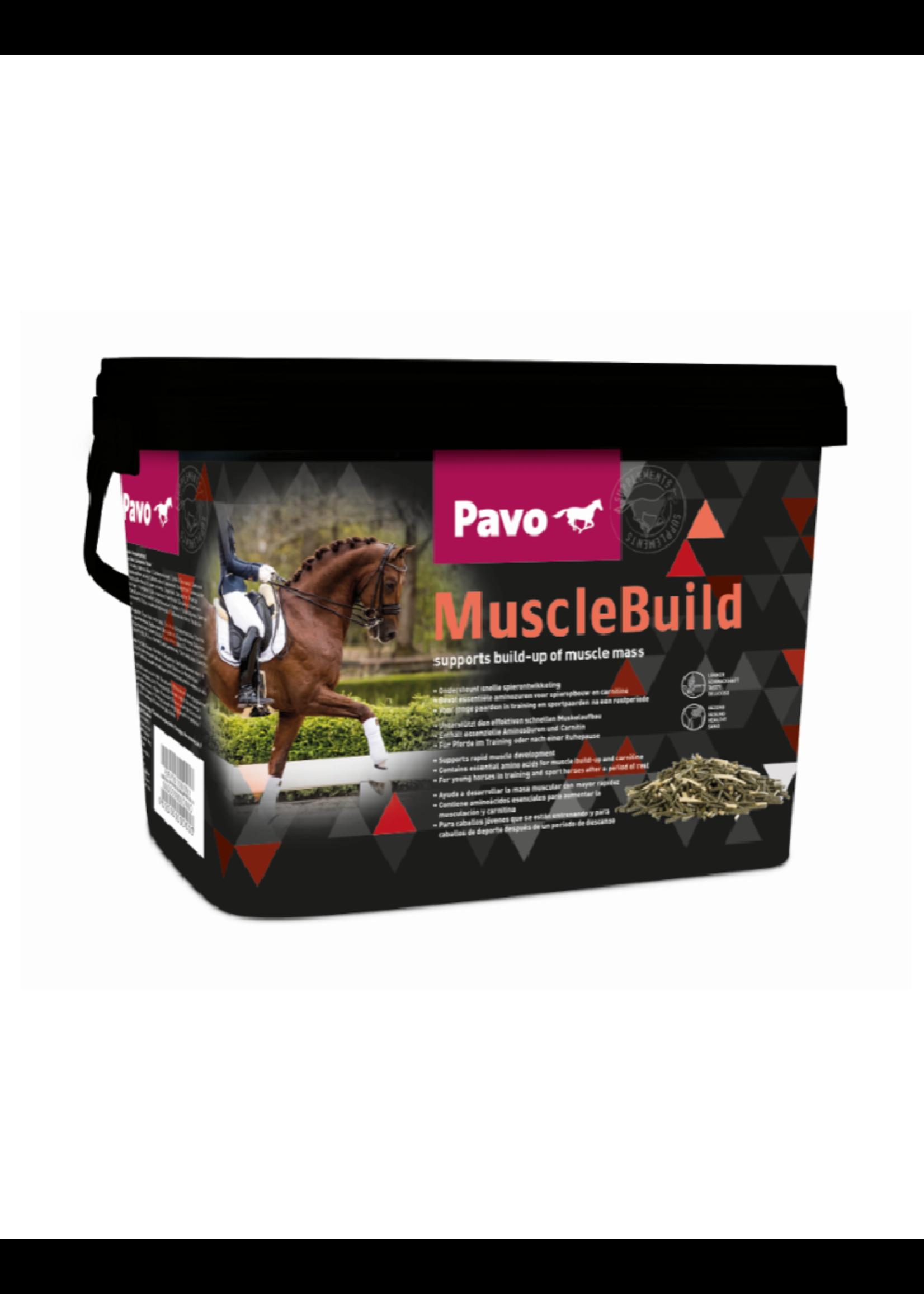 Pavo Pavo MuscleBuild 3kg