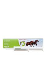 Excellent Excellent Vitalsporal Horse