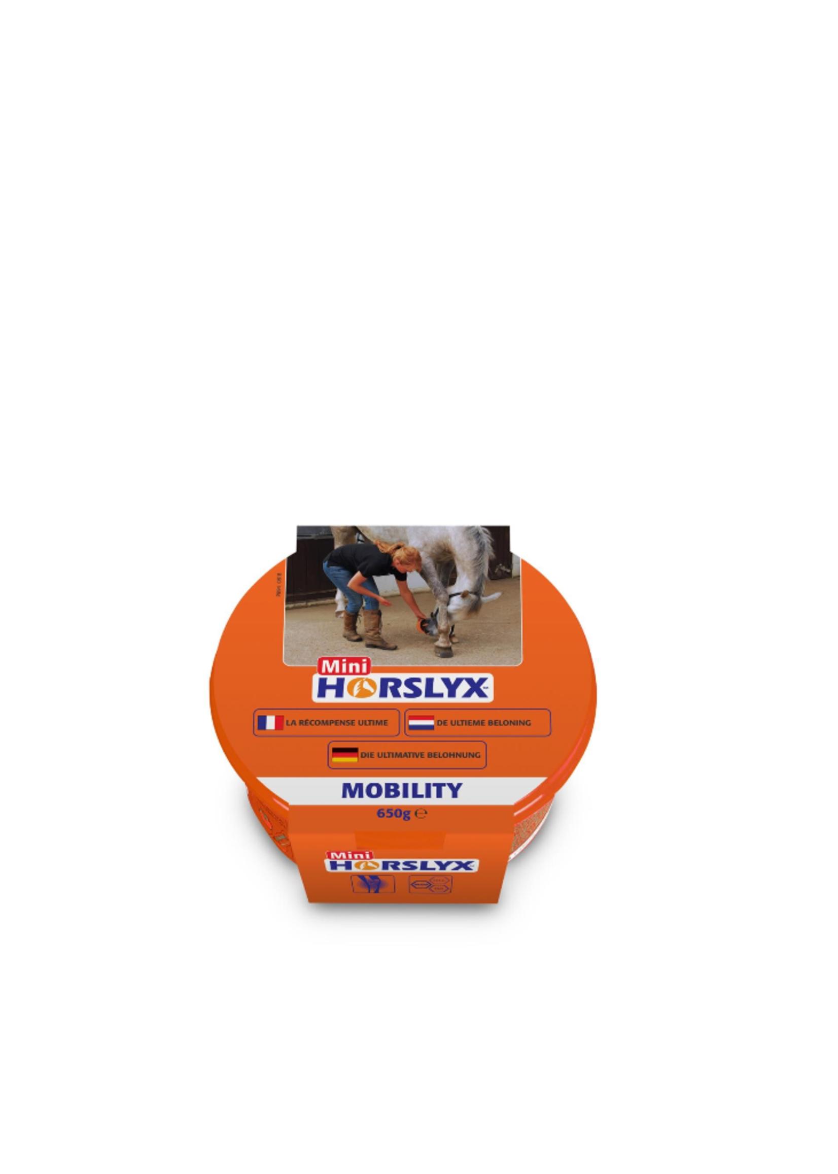 Horslyx Horslyx Liksteen Mini 650gr
