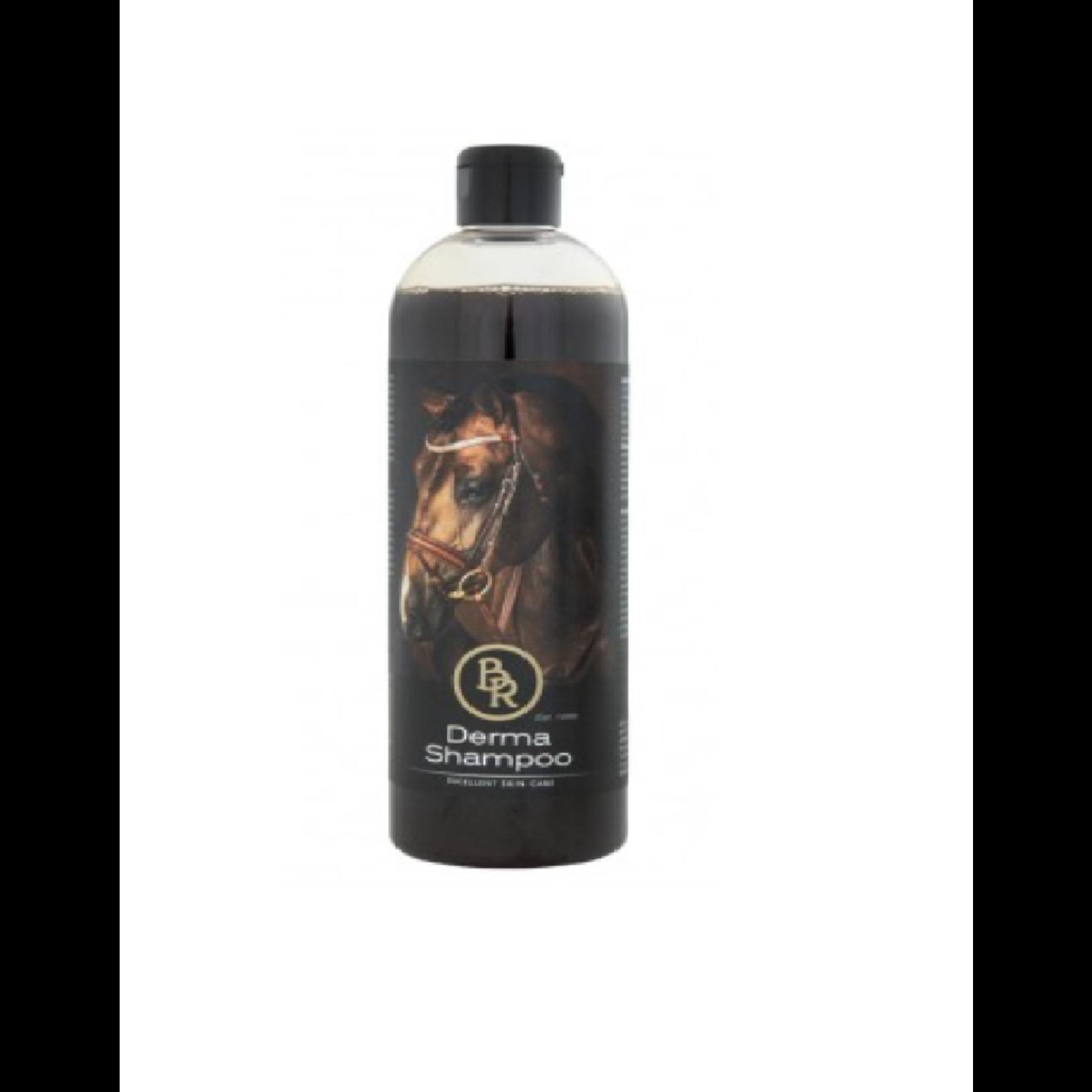 BR BR Derma Shampoo 500ml