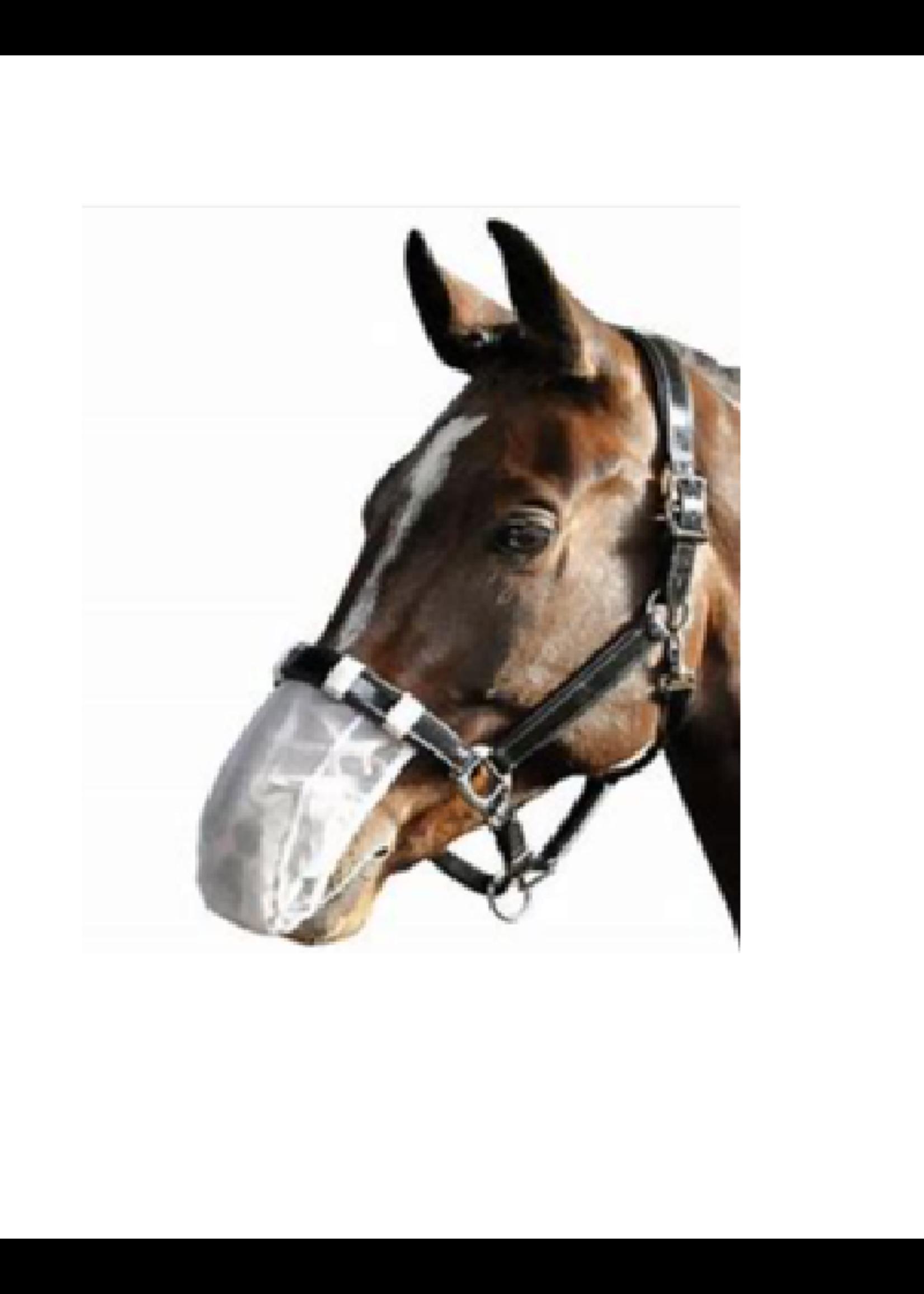 Harry's horse Harry's horse neusnetje