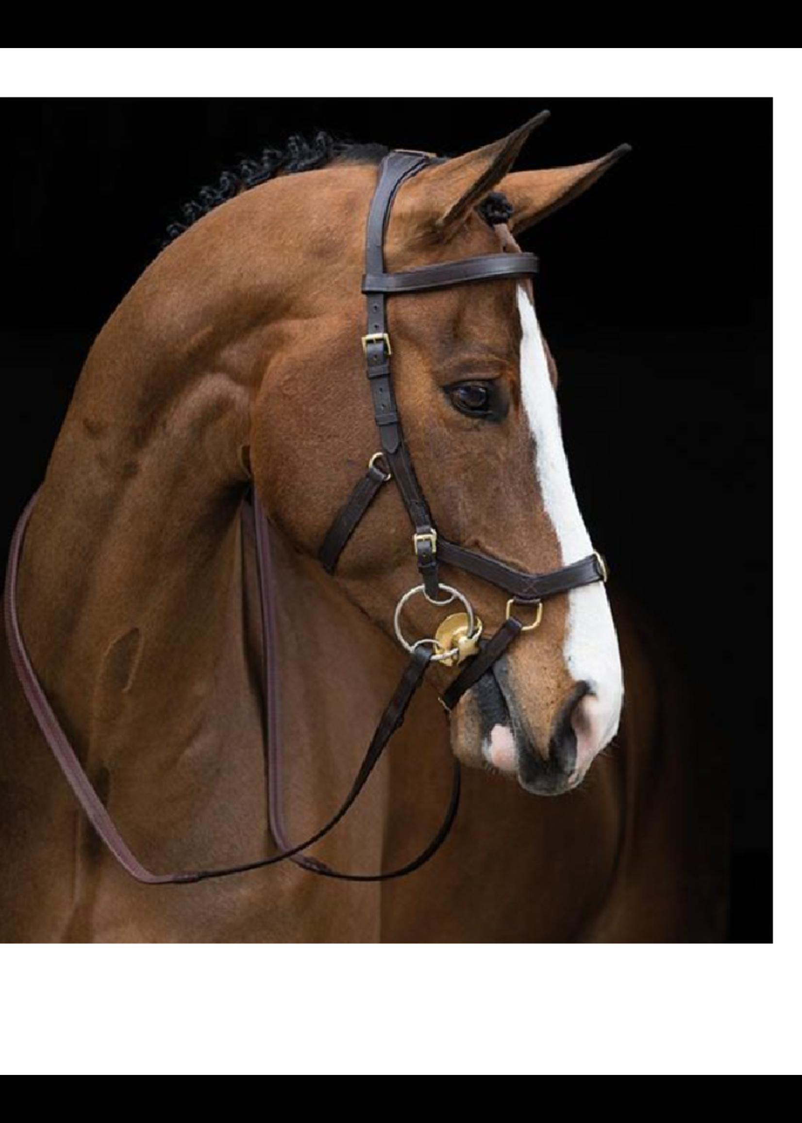 Horseware Horseware Rambo Micklem Multi Prof  Hoofdstel