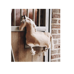 Kentucky Kentucky Relax Paardenspeeltje Horse