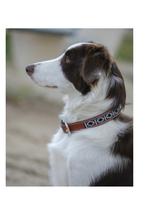 Pénélope Pénélope Honden Halsband