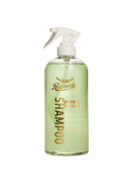 Rapide Rapide Spray Shampoo