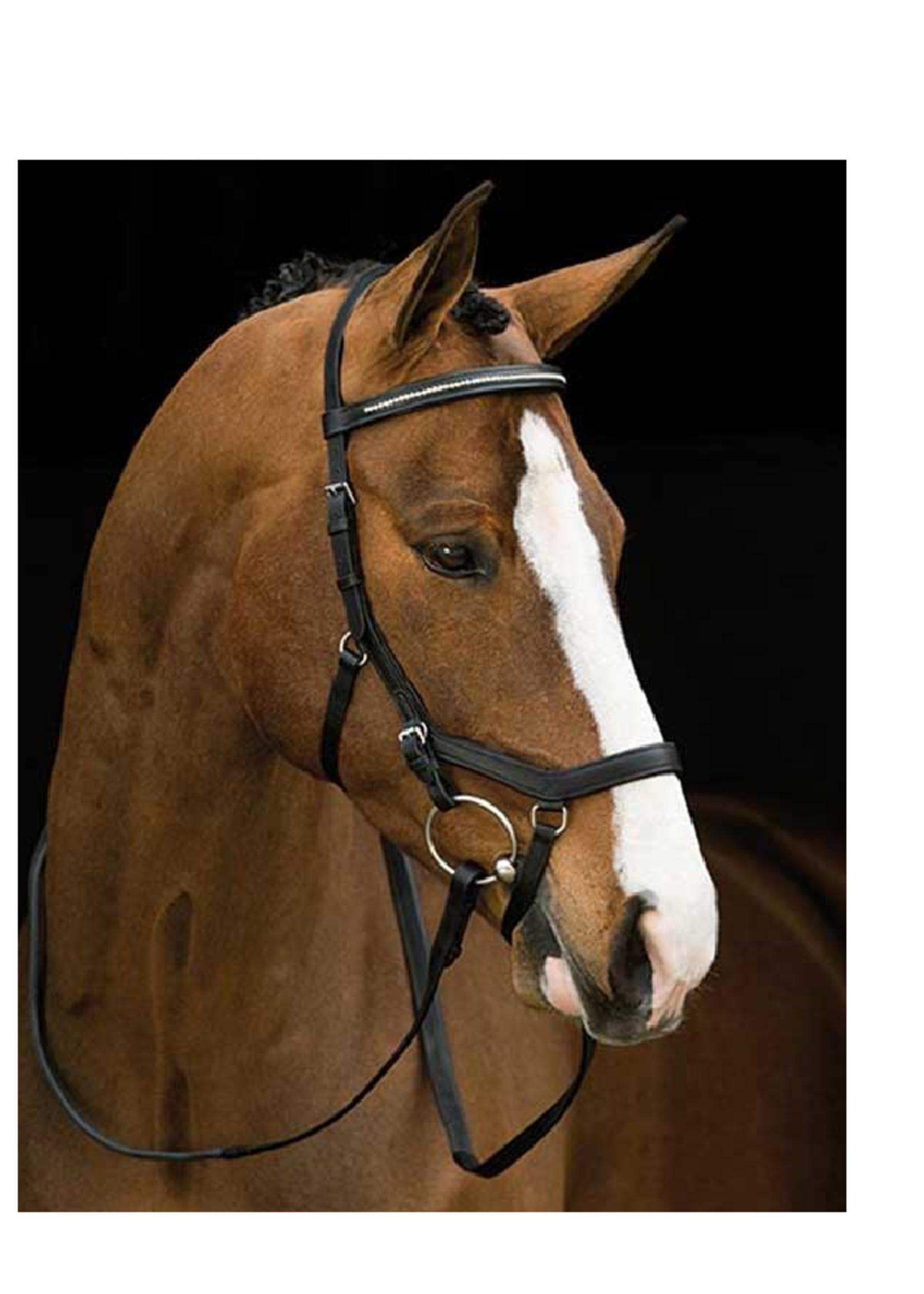 Horseware Horseware  Micklem Diamant  Hoofdstel