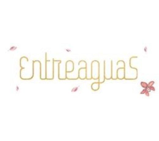 Entreaguas swimwear