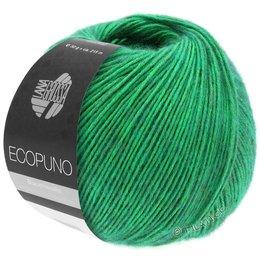 Lana Grossa Ecopuno 41 - Grün