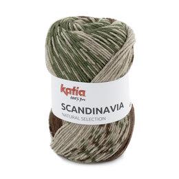 Katia Scandinavia 203 - Grün-Braun