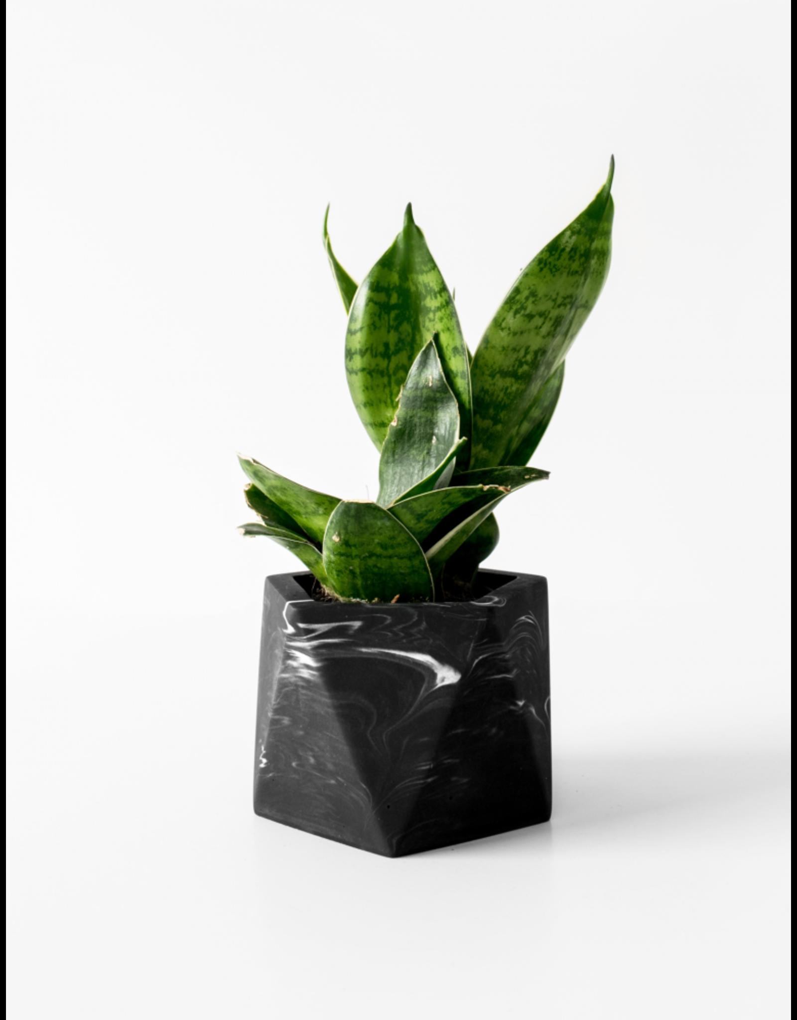 Plantenpot Mare Medium Black Marble