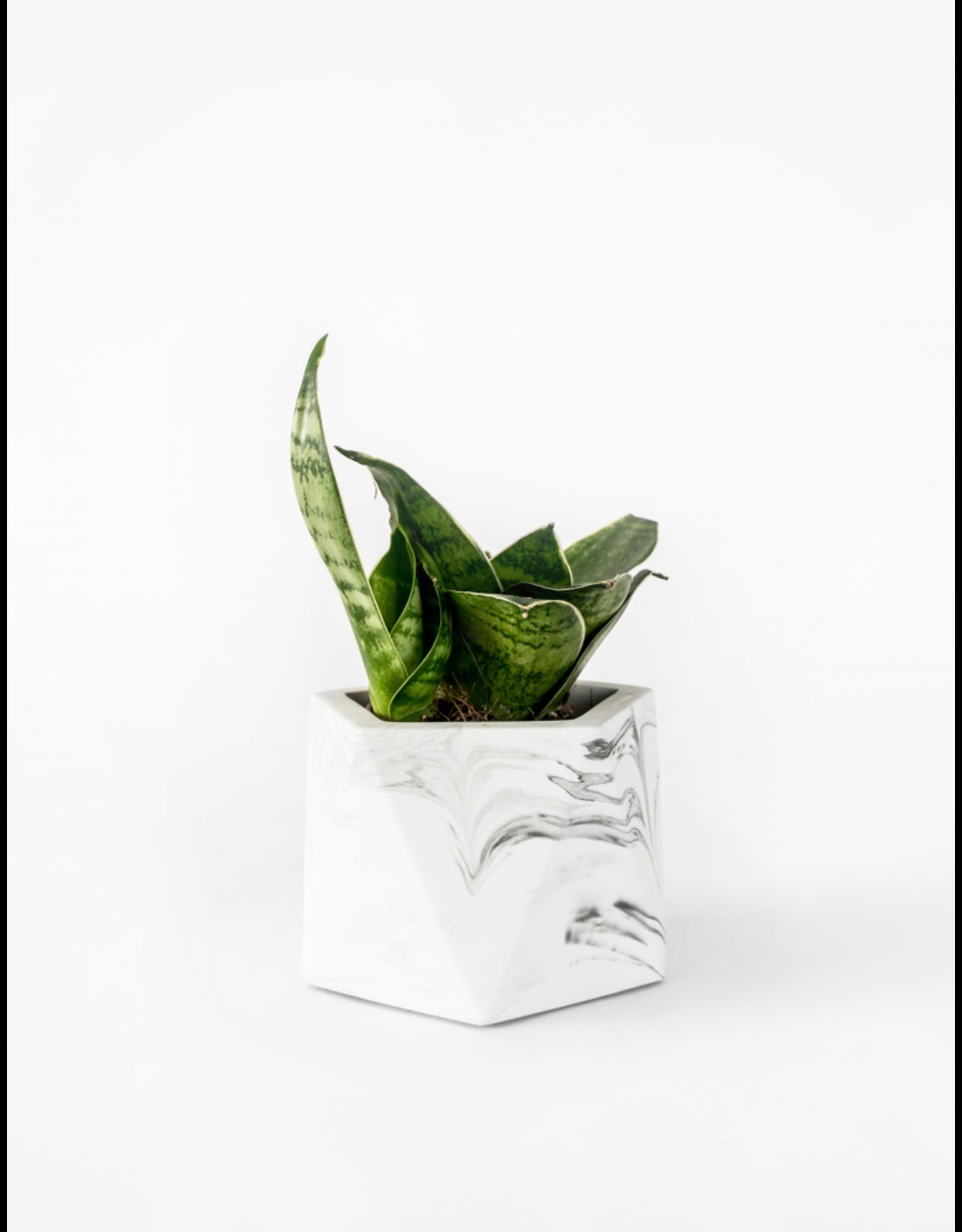 Plantenpot Mare Medium White Marble