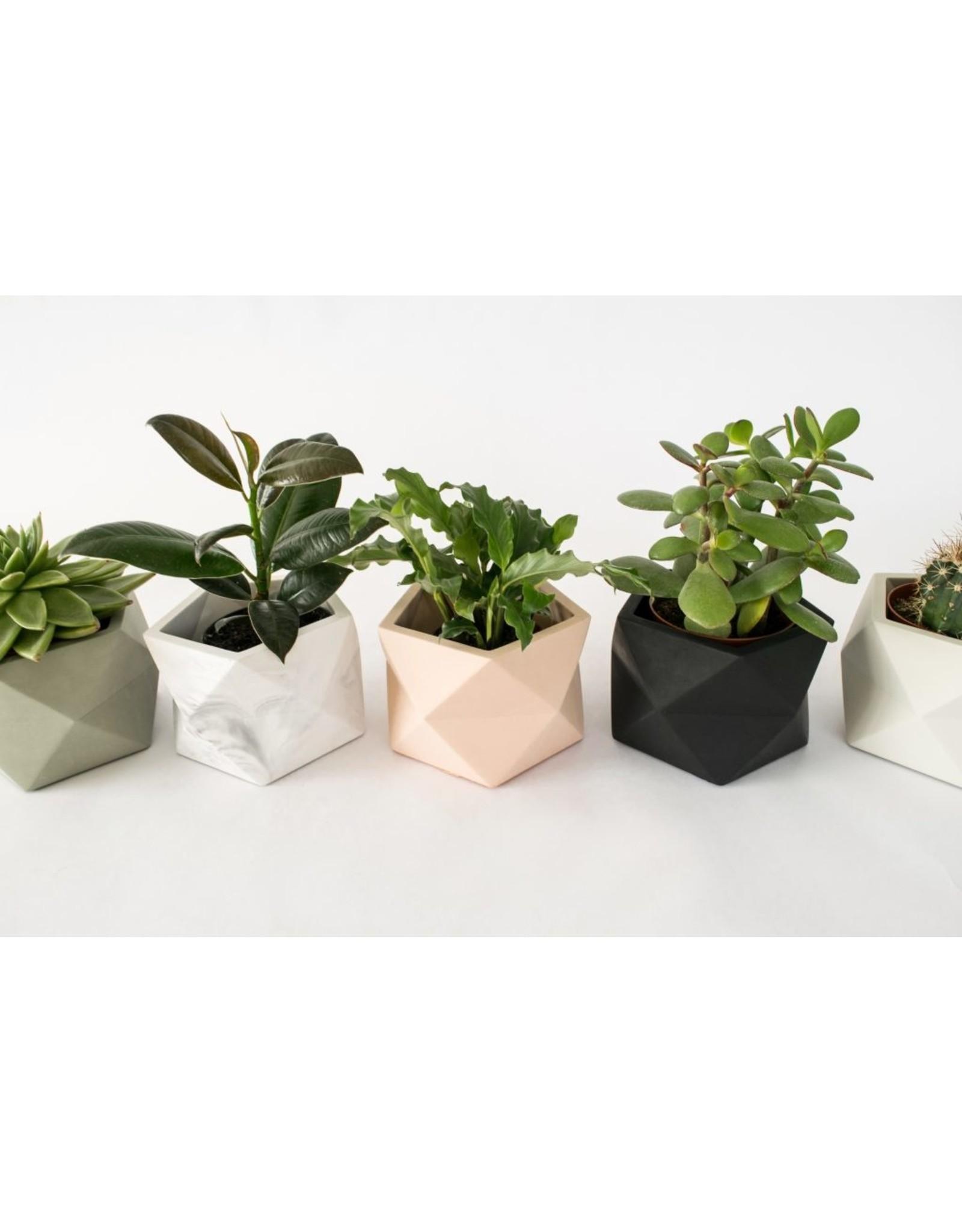 Plantenpot Palua Medium Silver Green