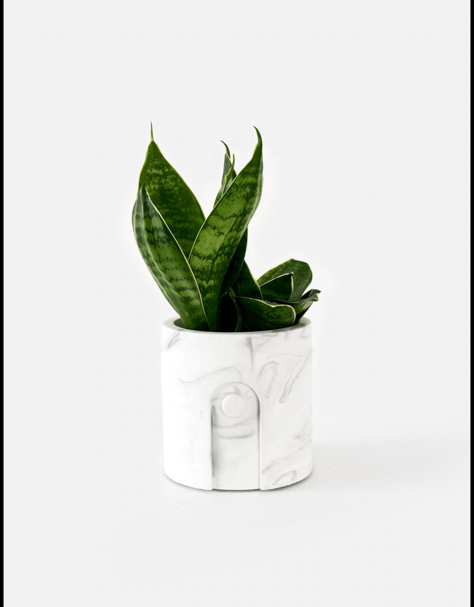 Plantenpot Emilia White