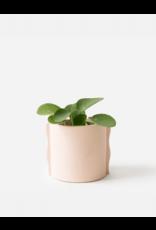 Plantenpot Noah roze