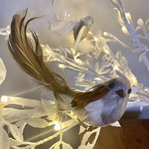 Mini Feather Bird