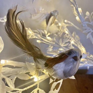 Level 1 Accessories Mini Feather Bird
