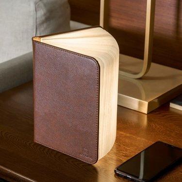 Level 1 Accessories Mini Smart Book Light - Brown leather