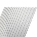116 x 305 cm Polyester Damwandplaat Transparant Type L 107/19