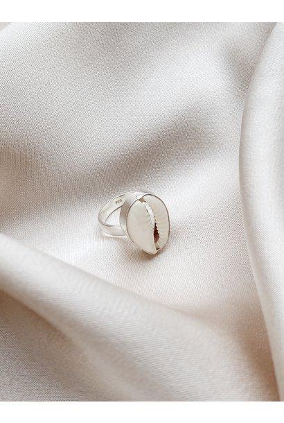 Ring 34 Shell