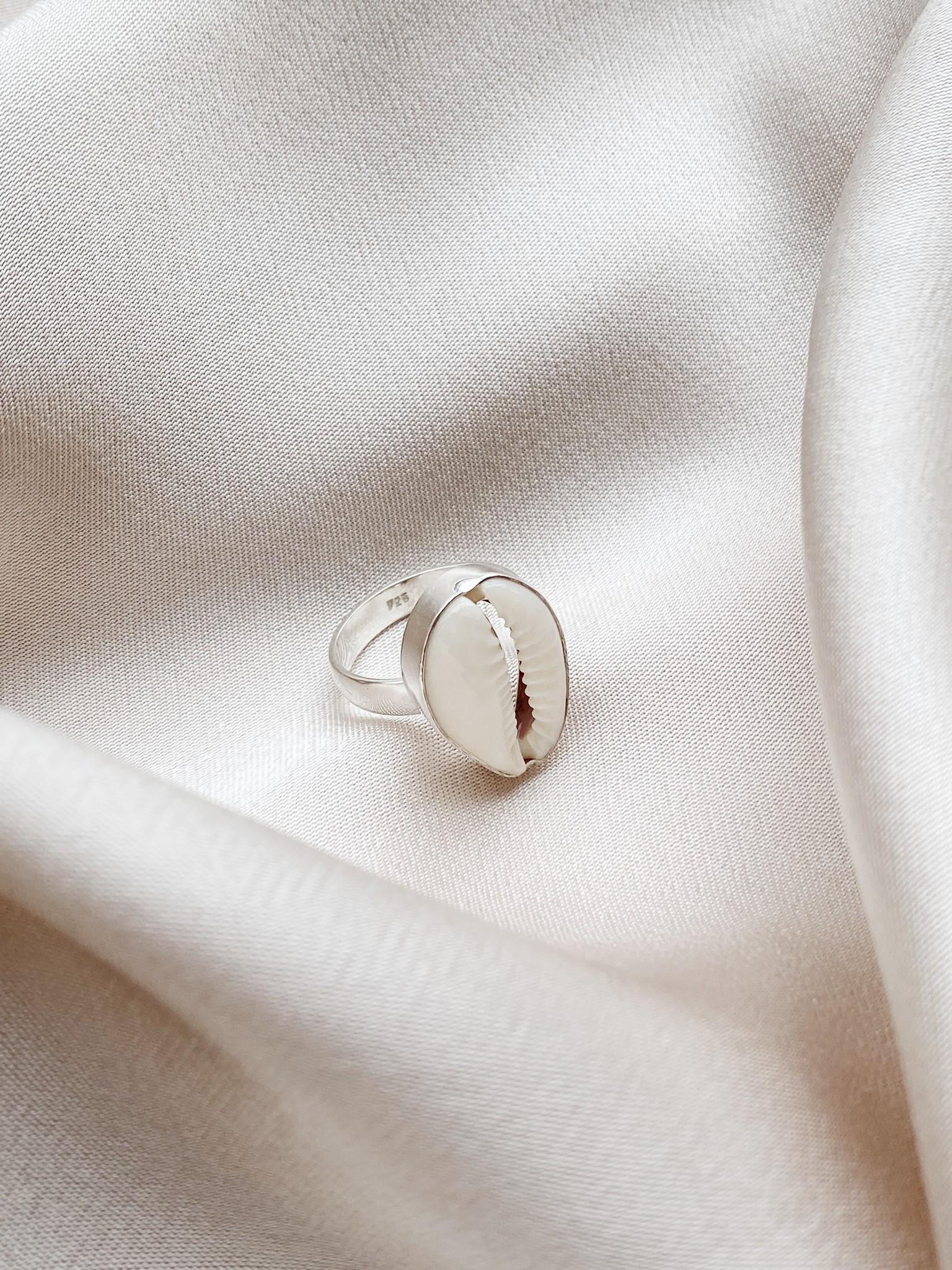 Ring 34 Shell-1