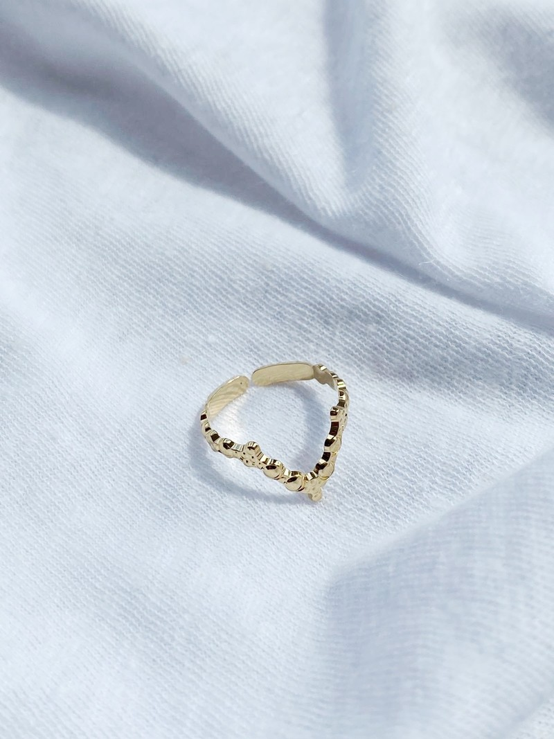 RR V Revisited Ring