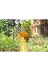Tornadica Tornadica Profi Garden Auger