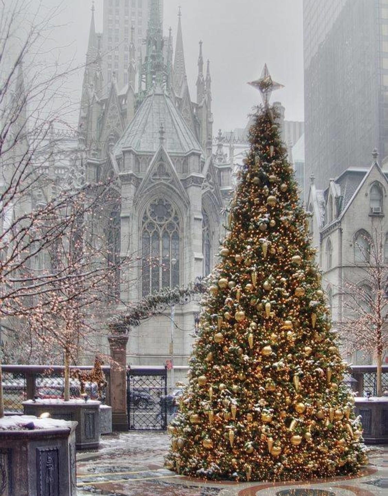 Kerstboom huren 450 meter