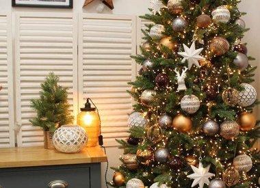 Kerstboom huren