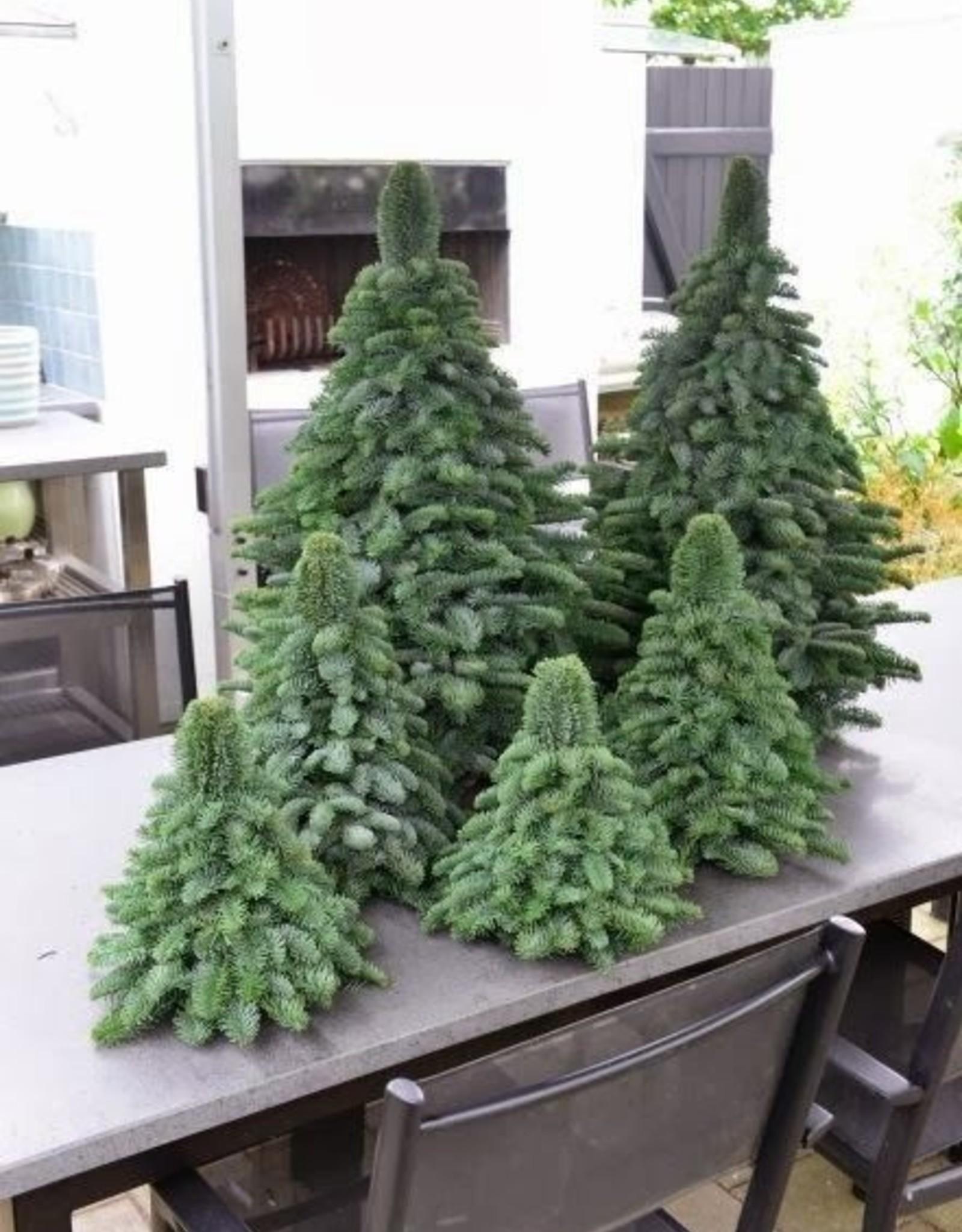 Schattige kerstboompjes