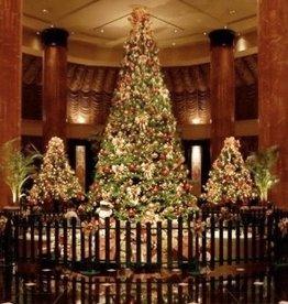 kerstboom 5 meter Giant Tree